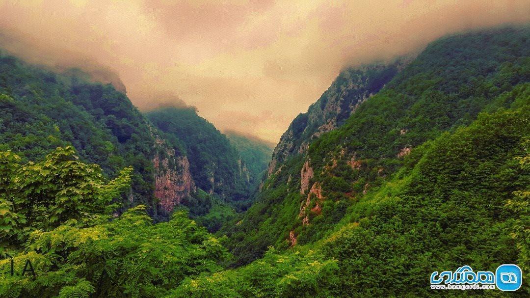 جنگل دو هزار تنکابن، عروس طبیعت ایران