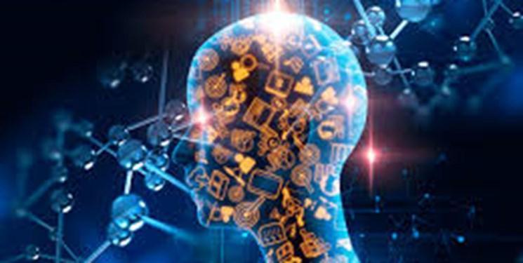 علوم اعصاب شناختی میان دانش آموزان گسترش یافت