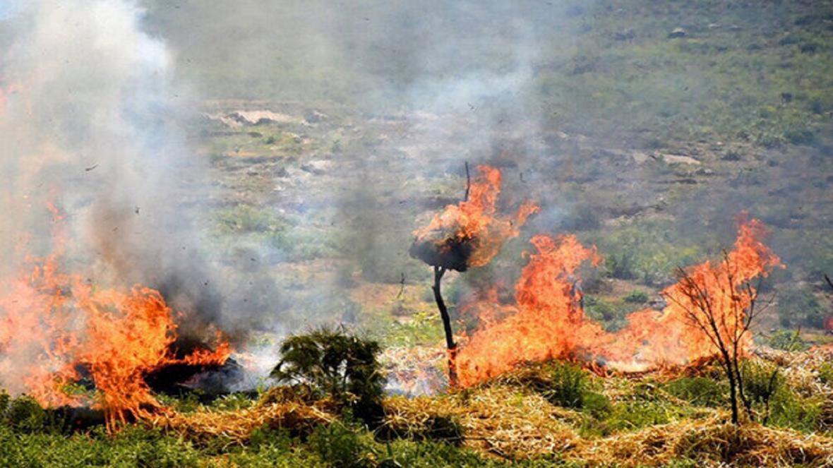 آتش سوزی 4 هزار مترمربع از باغات ناحیه غرب شهرکرد
