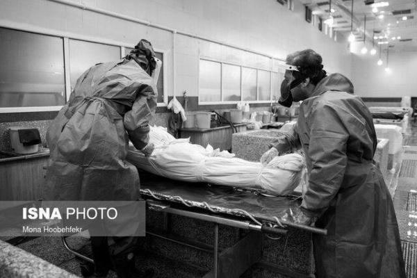 400 بیمار مبتلا به کرونا در البرز بستری هستند