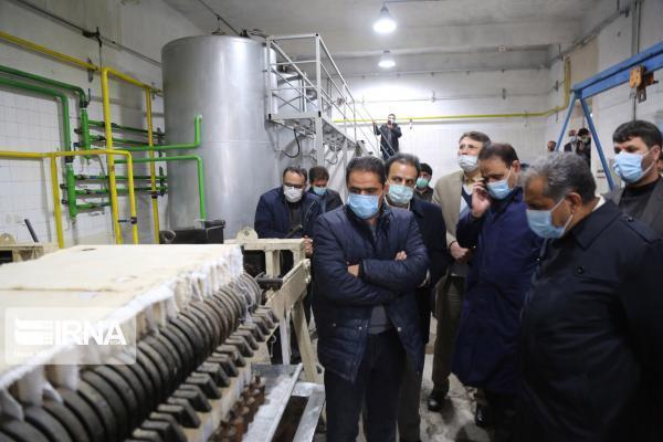 خبرنگاران استاندار قزوین از یک واحد تولید روغن زیتون در طارم سفلی بازدید کرد