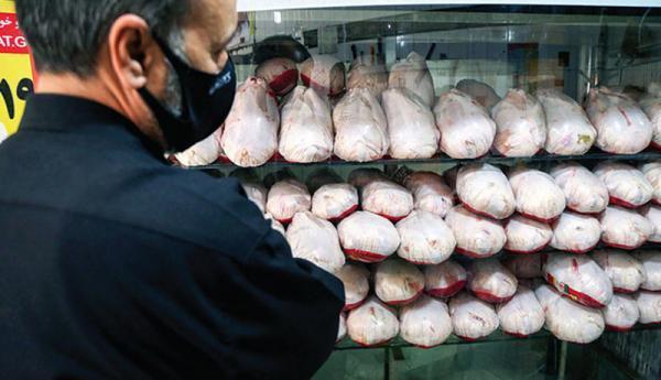 قیمت مرغ در بازار آزاد غیر منطقی است
