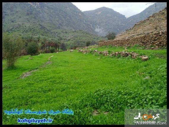روستای دژکوه ؛ منطقه ای خوش آب و هوا از توابع کهگیلویه و بویراحمد، عکس