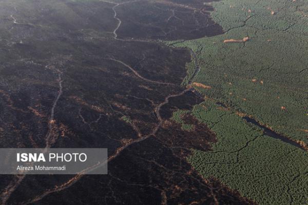 آتش سوزی در 3 هزار هکتار از هورالعظیم ، مهار آتش در دو مخزن تالاب