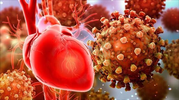 معاون دانشگاه علوم پزشکی ایلام:بیماران قلبی در معرض انواع شدید کرونا هستند